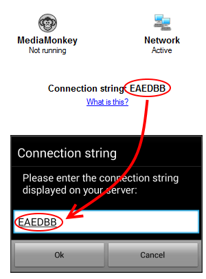 Image displaying the connection string.